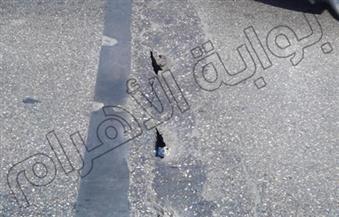 حي منشأة ناصر ينتهي من إصلاح كباري المشاة.. ويرفع إشغالات شارع الطيران