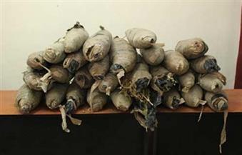 ضبط سيدة وطالبة بحوزتهما 255 كيلو من نبات البانجو بالأقصر