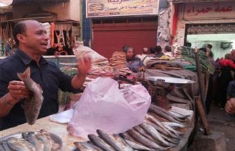 كفرالشيخ تعلن استعدادها لاحتفالات شم النسيم.. والمواطنون يحجمون عن شراء الفسيخ لهذا السبب