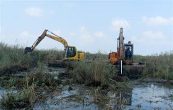 إزالة تعديات على 2124 فدانًا في بحيرة المنزلة بدمياط