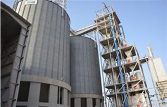 ارتفاع توريد القمح بشون وصوامع الشرقية إلى 516 ألفا و286 طنا
