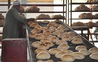 """وكيل """"زراعة النواب"""": سلامة رغيف الخبز أمن قومى.. وأزمة """"الإرجوت"""" لابد أن تخضع للقوانين"""