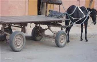 القبض على عامل نظافة لسرقته عربة كارو بالإكراه فى المطرية