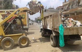 رفع 30 طن قمامة من شوارع أبوتيج في أسيوط