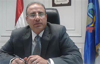محافظ البحيرة: هيئة الاستثمار وافقت على تخصيص 128 فدانًا لمؤسسة الأهرام لإقامة مصنع الورق
