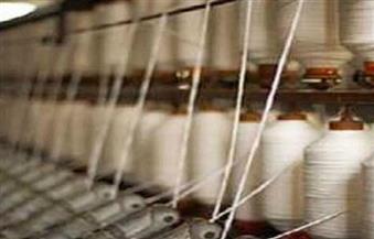 رابطة أصحاب مصانع الغزل بالمحلة تطالب باستحداث وزارة للغزل وعودة زراعة القطن المصري