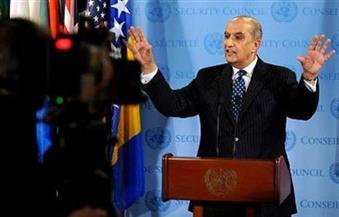 """""""مندوب جامعة الدول لدى الأمم المتحدة"""": مصر نجحت في مجلس الأمن بدعم دولي"""