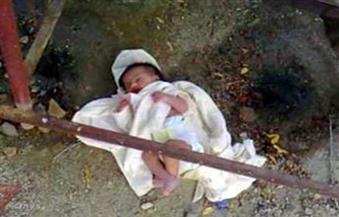 العثور على جثة طفل حديث الولادة ملقاة في الزراعات بالأقصر