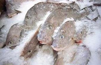 المنوفية: ضبط 114 كيلو لحوم و136 كيلو سمك مجمد غير صالحة للاستخدام الآدمى