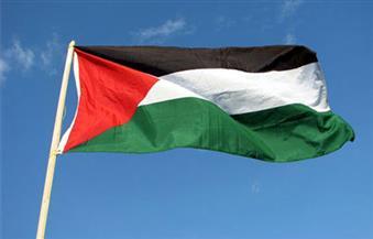 أيرلندا تتضامن مع فلسطين برفع علمها لمدة شهر