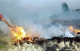 البيئة ترصد 238  محضرا لحرق المخلفات الزراعية