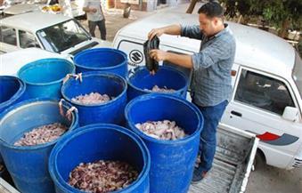 """""""الزراعة"""": ضبط 9 أطنان لحوم ودواجن وأسماك فاسدة في 17 محافظة خلال ثلاثة أيام"""