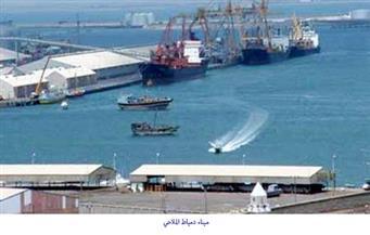 ميناء دمياط يستقبل 6 سفن متنوعة