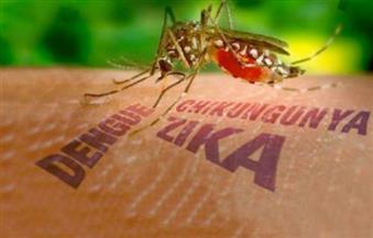 تراجع عدد حالات الإصابة بفيروس زيكا في البرازيل