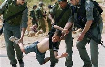 الانتهاكات الإسرائيلية تتصدر جدول أعمال اللجنة العربية لحقوق الإنسان
