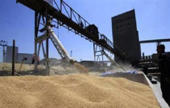 """""""الزراعة"""" و""""التموين"""" تبدآن اجتماعاتهما التنسيقية لوضع ضوابط استلام القمح من المزارعين"""