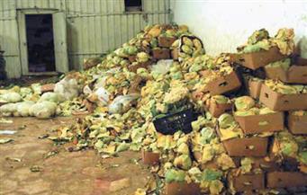 ضبط أطنان من الأغذية الفاسدة في حملات تموينية بالمحافظات