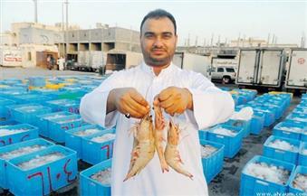 السعودية تعلق استيراد الجمبري من الهند بسبب مرض البقع البيضاء الفيروسي