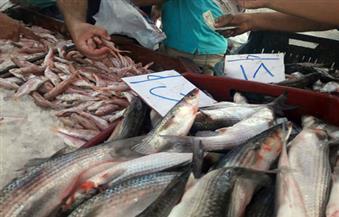 تعرف على أسعار الأسماك في أيام عيد الفطر