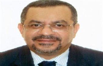 الجبلي: مصلحة مصر تقتضي مشاركة إيجابية للحفاظ على المكتسبات