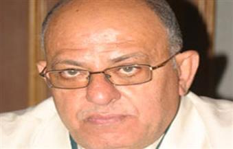 """فؤاد ثابت: أنفاق قناة السويس تعزز تحويل """"بئر العبد"""" لمدينة صناعية"""