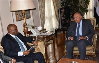 شكري يستقبل رئيس البنك الإفريقي للتصدير والاستيراد ويثمن دعم البنك للمشروعات في مصر