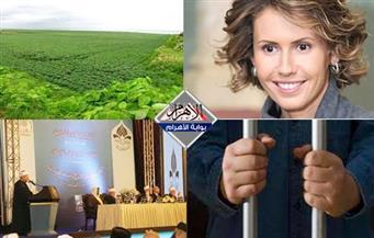 """شروط """"أراضي مشروع المليون ونصف فدان..حبس الوزير.. إغراء زوجة الأسد.. تحريم الفتوي بنشرة  الثالثة"""