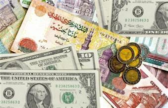 الجنيه يهبط أمام اليورو والإسترليني.. ويستقر مقابل الدولار في تعاملات البنوك الرسمية