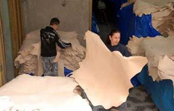 وفد مصرى متخصص فى  الدباغة يزور إيطاليا لاستطلاع أحدث تكنولوجيات تصنيع الجلود