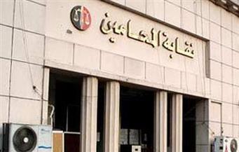 جمعية عمومية بالمحامين للتصديق على زيادة المعاشات والميزانيات غدًا