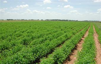 استثمارات هندية جديدة العام القادم بـ50 مليون جنيه فى مجال الزراعة