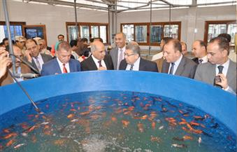 بالصور.. وزيرا التعليم العالى والصحة ومحافظ كفرالشيخ يتفقدون كليات الألسن والثروة السمكية والصيدلة