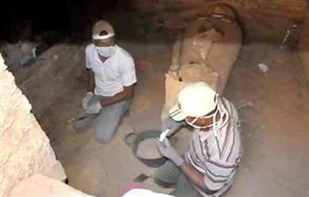 باحث أثري: دياب تمساح يكتشف 20 ألف تمثال بالكرنك والشيخ الضوي يتجاهله التاريخ في دير المدينة