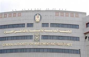 """هاني قسيس: إلغاء المناطق الحرة في قانون الاستثمار يهدر الصادرات والحديث عن التهريب الجمركي """"باطل"""""""