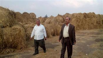 """مديرا """"الزراعة والبيئة"""" بالغربية يتفقدان مواقع تدوير قش الأرز لمتابعة سير العمل"""