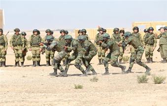 القوات المصرية والروسية تقتحم قرية حدودية وتطهرها من العناصر الإرهابية وتحرر الرهائن