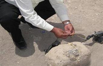 بلاغ من مجهول عن وجود مفرقعات داخل شقة غرب الإسكندرية والأمن يكشف سلبيته