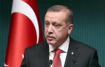 أردوغان: الحملة التركية ستستهدف مدينتي منبج والرقة السوريتين