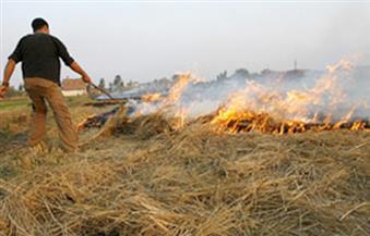 تحرير 1635 محضرًا بمخالفات بيئية لحرق قش الأرز في محافظة الغربية
