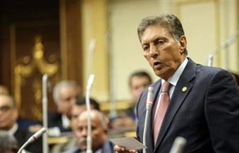 """رئيس""""الشئون العربية"""" بـ """"النواب"""": تصريحات إياد مدني خرق جسيم لكل قواعد السياسة والدبلوماسية والدين"""