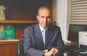 """النجار لوكالة """"شينخوا"""" الصينية: مصر العنصر الرئيسي في تطبيق مبادرة """"الحزام والطريق"""" بالشرق الأوسط"""
