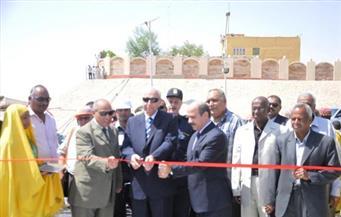 بالصور.. مدير أمن أسوان يشارك في احتفال تشغيل عبارة أبو سمبل بتكلفة 6 ملايين جنيه