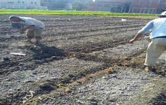 زراعة أسيوط تنظم 493 ندوة إرشادية لـ10 آلاف و638 مزارعًا خلال 6 شهور