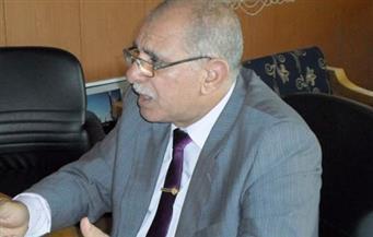 """مصر والسودان تتحملان مناصفة ديون """"وادي النيل للملاحة"""""""
