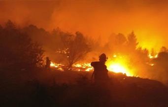 """عقلية """"العمل الارهابي"""" ودور المقاومة تسيطران على تل أبيب تجاه الحرائق"""