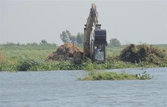 تنفيذ 313 قرارًا بإزالة مخالفات على بحيرة البرلس خلال شهر