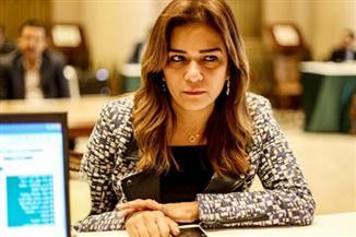 رئيسة لجنة السياحة بالنواب تشيد  بنتائج ورشة العمل المصرية - اليابانية