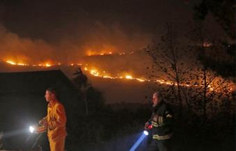 إسرائيل تلقي القبض على 13 شخصًا للاشتباه في إشعالهم حرائق غابات