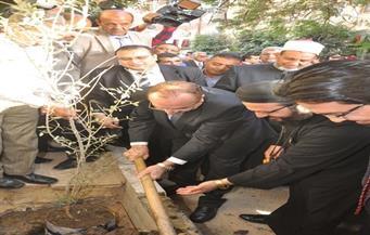 """بدعوى من الأزهر والكنيسة.. """"حبيب"""" يدشن حملة زراعة 3 ملايين شجرة زيتون في بني سويف"""