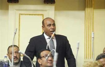 أعضاء لجنة الدفاع يشيدون بحملات وزارة الداخلية ضد مافيا المخدرات قبل رمضان